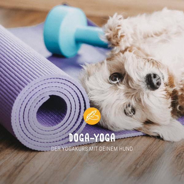 Posts_Ern-hrungswoche_Freitag_doga-yoga