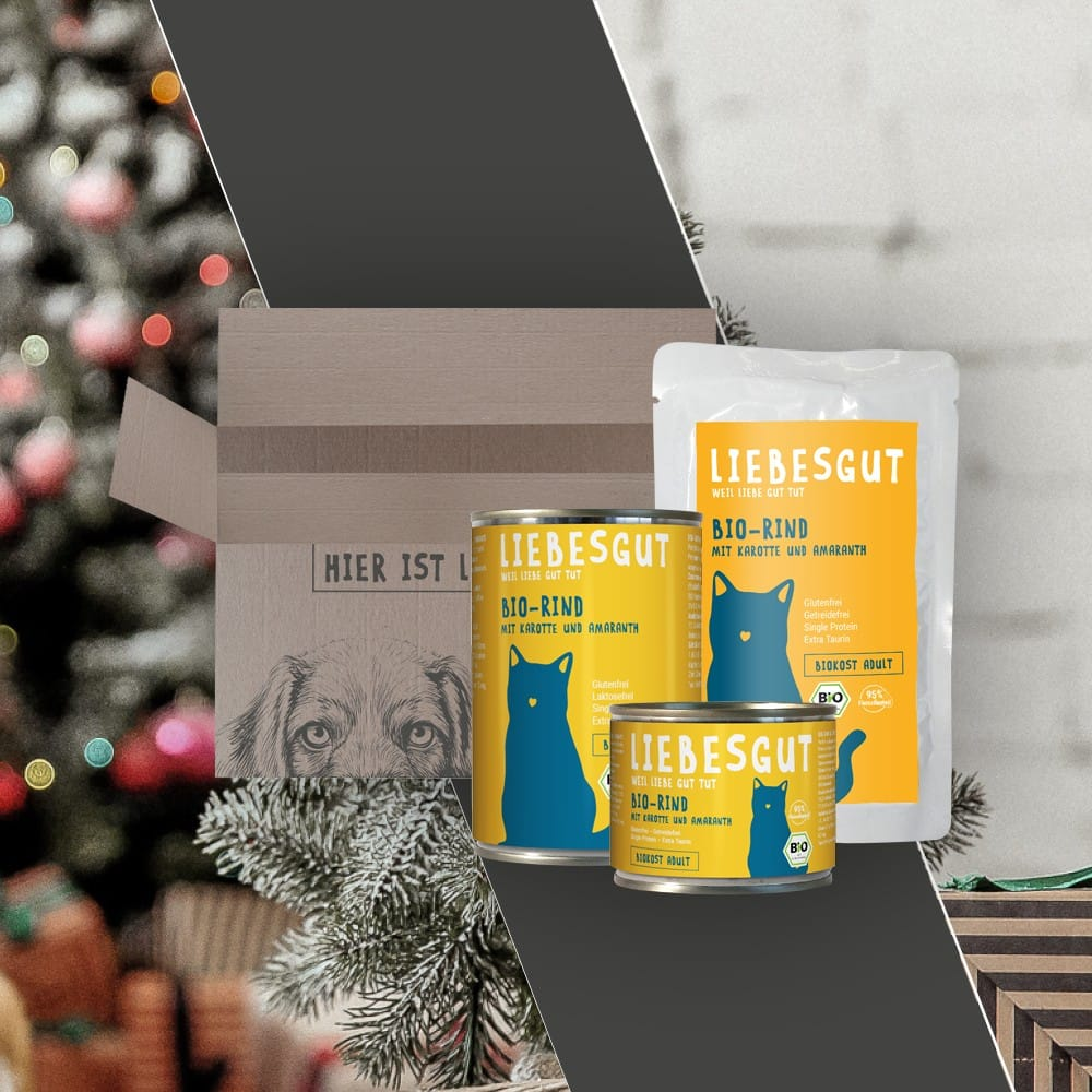 Geschenkpaket Katze 1