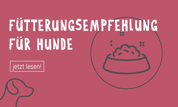 F-tterungsempfehlung_HundWrjHFXFKTLZOv