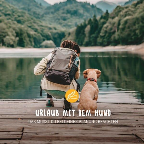 Post_Juli_Blogbeitrag_Urlaub_mit_Hund