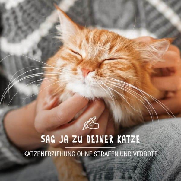 Vorschaubild_Katze_jabSUblEIl8o6uy