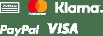 Vorkasse, Kreditkarte (Mastercard, Visa), Sofortüberweisung (Klarna), Paypal